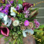 Seasonal Pick 25 Autumnal